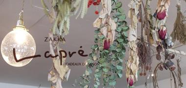 雑貨 Lapre(ラプレ)